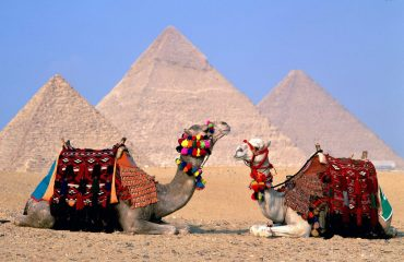 3000x2000-ttwo-camels