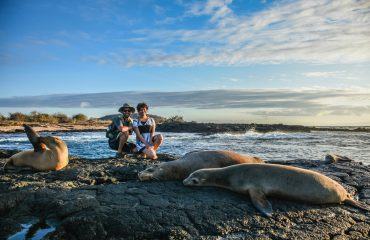 GPS51024-sea-lion-couple-landscape