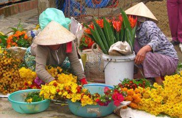 Wietnam 11