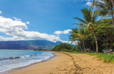 beach-1630540
