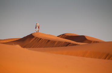 desert-1101123