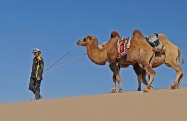 desert-3044148