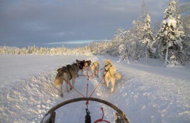 finland-2215334