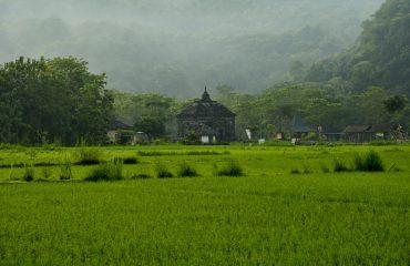 landscape-nature-2885605