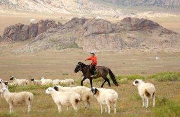 mongolia-419875