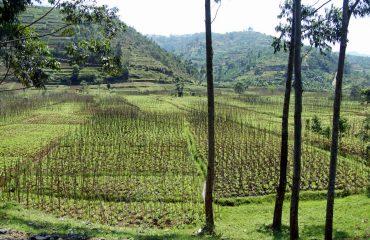 rwanda-123407