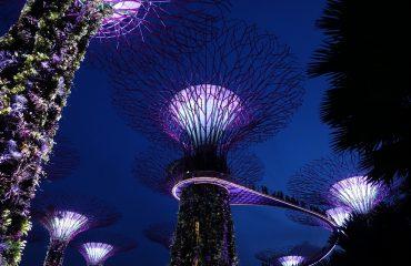 singapore-3243844