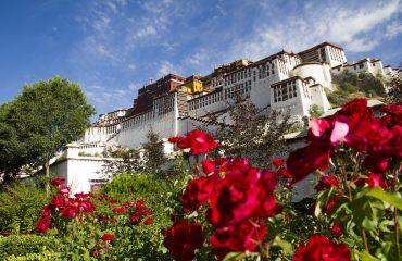 tibet-2948306