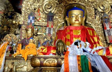 tibet-694625