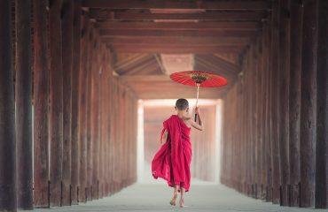 umbrella-1807513