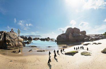 wyprawy-Kapsztad-Park-Krugera-Johannesburg-Boulders-Beach-Kapsztad-05