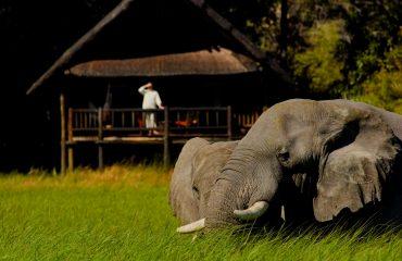 wyprawy-Splendor-Afryki-Belmond-Khwai-River-Lodge3