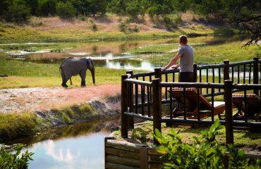 wyprawy-Splendor-Afryki-Belmond-Savute-Elephant-Lodge2