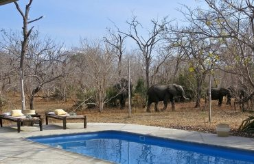 wyprawy-safari-i-wypoczynek-na-plaży-Tanzania-Siwandu7