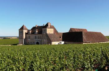 chateau-de-clos-de-vougeot-374419