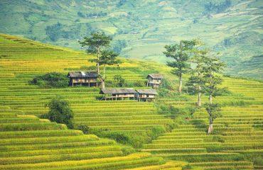 the-village-1822441_1920