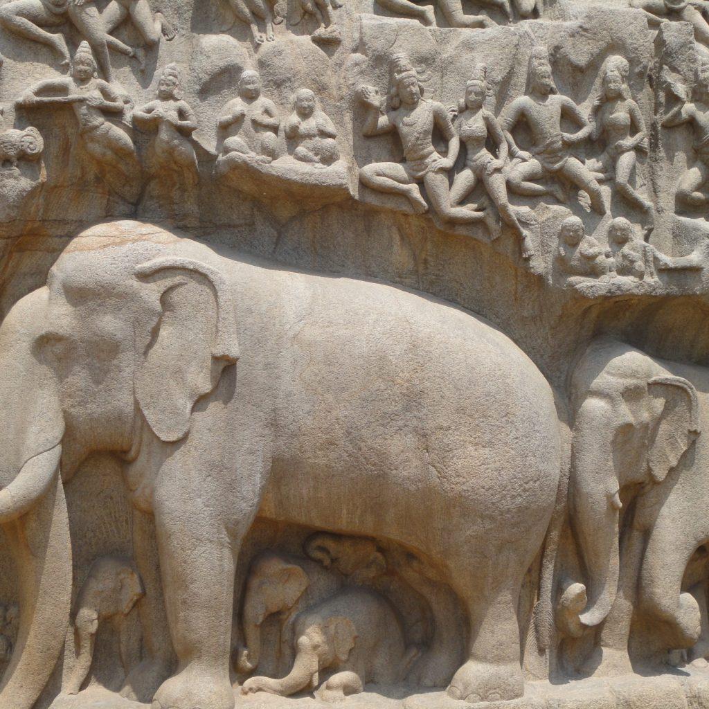 elephant-1853890