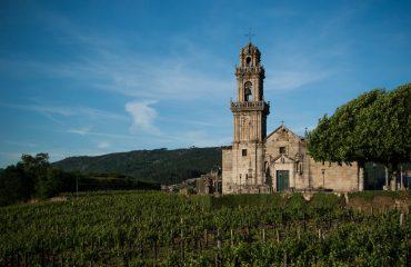 vineyard-1333114